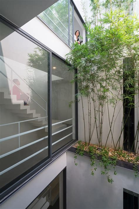 A Small House Divided by A House In Trees Locates In A Small Narrow Land Which