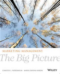 The Big Picture Marketing Management