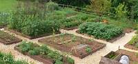 vegetable garden plans How to Plan a Vegetable Garden: A Step-by-Step Guide