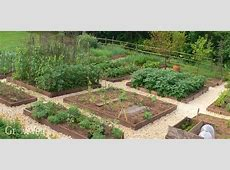How to Plan a Vegetable Garden A StepbyStep Guide