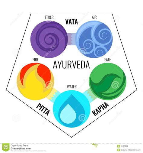 ayurvedic elements  doshas cartoon vector