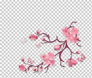 Flower Diagram Png  Clipart  Beauty  Blossom  Branch