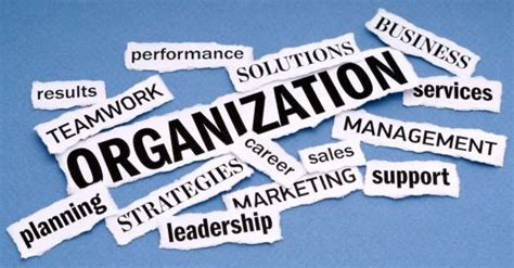 Essential features of sound organization