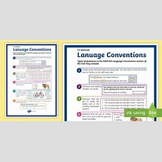 * New * Y5 Naplan Language Conventions Display Poster