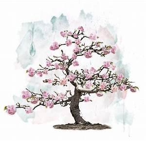 Rosa Blühender Baum Im Frühling : rosa bl hender baum stock abbildung illustration von ~ Lizthompson.info Haus und Dekorationen