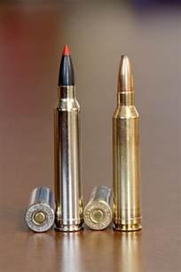 300 Win Mag vs 7Mm Mag Ballistics
