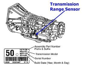 93 Ranger Wiring Diagram Auto Transmission by Ford Backup Light Switch Location On Transmission Wiring