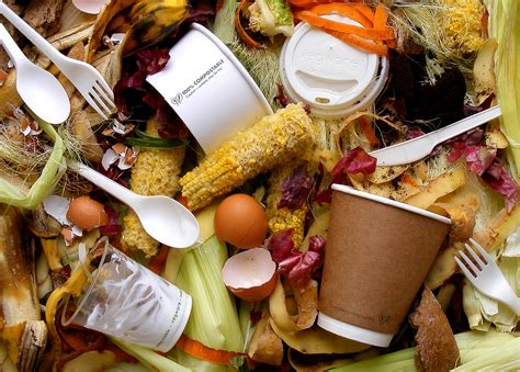 compost cuisine thinking compostable not conventional down2earth materials