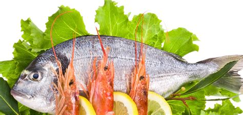 seafood north star buckner sysco puts charge website