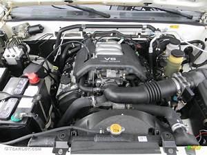 1999 Isuzu Rodeo S 3 2 Liter Dohc 24