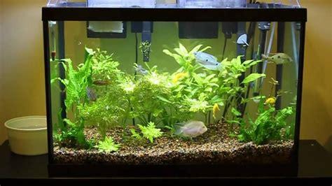 beautiful home aquarium design interior decoratorist