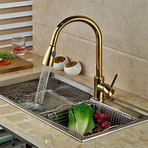 Broward Mounted Kitchen Faucet  Gold