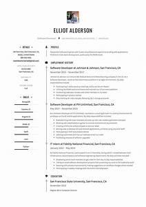 Guide  Software Developer Resume   12 Samples