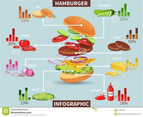 Hamburger Ingredients Infographic Stock Vector Notes On Flowchart And Algorithm Flow Chart Of Two Numbers Create Meme Computer Hardware In Acc Math Strategic Management Model Display Even