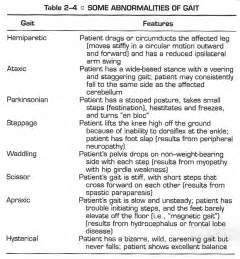 Different Types of Gait Patterns