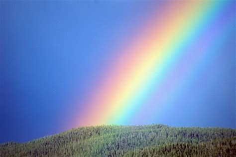 how many colors are in the rainbow how many different colors are there in a rainbow