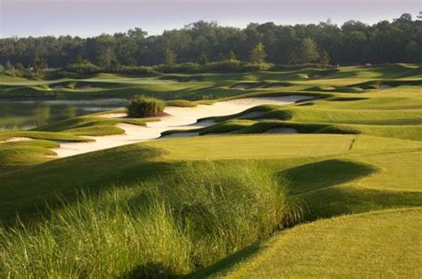 Golf Hammock Golf Course by Course At Hammock Resort Jacksonville Book