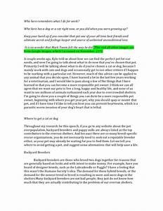 Argumentative Essay Animal Rights Essays On Contemporary Art  Argumentative Essay On Animal Rights Brett Favre Head Injury
