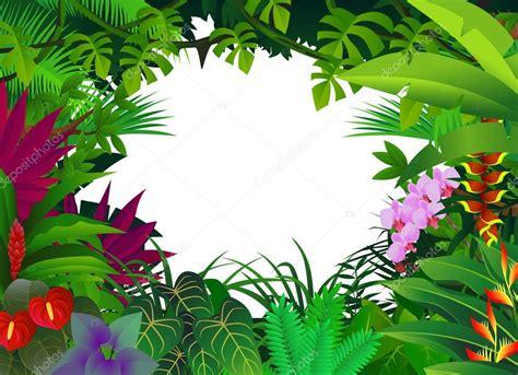 foto de Fundo de floresta tropical Vetor de Stock © dagadu #7980046