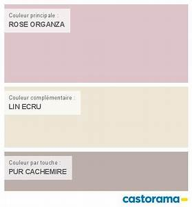 Nuancier Peinture Castorama : castorama nuancier peinture mon harmonie peinture rose ~ Melissatoandfro.com Idées de Décoration