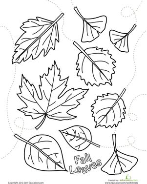 autumn leaves coloring page worksheet education 240 | autumn leaves coloring page preschool