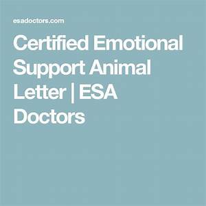 1000 ideas about emotional support animal on pinterest With emotional support dog certification letter