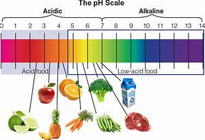Ph Measurement Of Pickled Fruits And Vegetables Laqua
