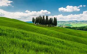 Italy Tuscany Hills Grass Field Wallpaper