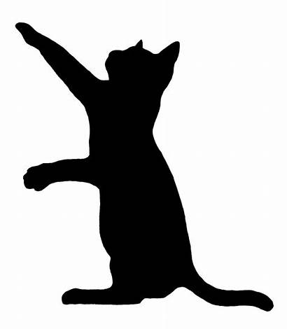 Cat Funny Silhouette Clip Drawings Getdrawings