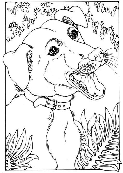dibujo  colorear perro mestizo img  images