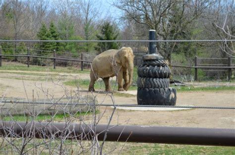 Columbus Zoo and Aquarium Half Price Admission