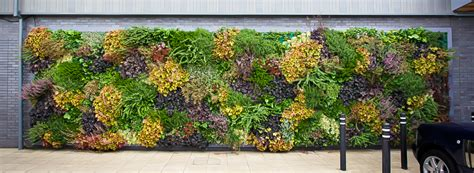 Vertical Gardens-the Sky's The Limit