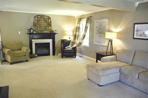 clean  carpets  pro tips living rich