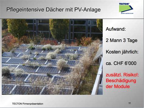 Dachbegruenung Oase Im Asphalt Dschungel by Gr 252 Ndach Aufbau Smartstore