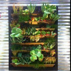 Mur Végétal Intérieur Ikea : mur vegetal ikea d co pinterest pots cuisine et ikea ~ Dailycaller-alerts.com Idées de Décoration