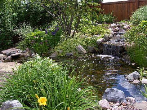 Beautiful Yellow And Purple Flowers Around Backyard Pond