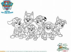 Paw Patrol Alle Hunde : toggolino die helden der paw patrol sind im anflug ~ Watch28wear.com Haus und Dekorationen
