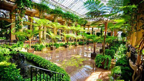 olive garden greece ny garden longwood garden garden for your inspiration