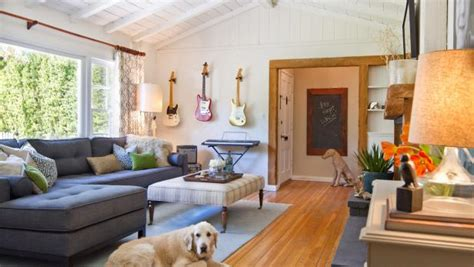 tips   pet friendly home hgtv