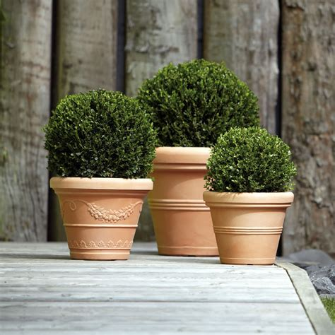 vaso terracotta prezzo vaso classico finto terracotta cotto argilla doppiobordo