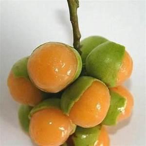 Mamones | Fruits | Pinterest