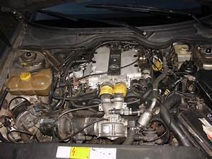 Omega Opel 2001 Engine Diagram  Omega  Free Engine Image For User Manual Download