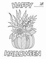 Halloween Coloring Contest Ftd Fall Pumpkin Gifts Bouquet Win Harvest Bootiful Bouquets Flower Story Giveaways Enter sketch template