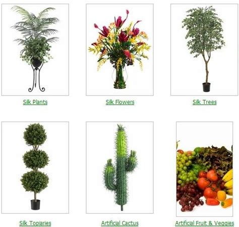 different types of plants quality silk plants blog the different types of silk plants and their significant uses