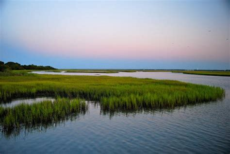 Hammocks State Park Nc by New Addition Planned For State Park Coastal Review