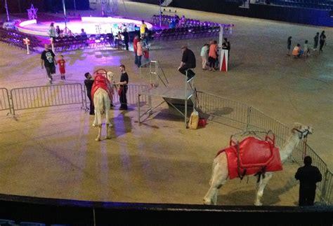 garden brothers circus garden brothers circus 10 fotos y 12 rese 241 as artes