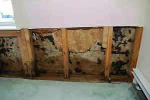 san diego testing mold  residential  commercial