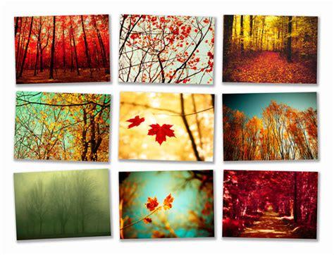 Autumn Wall Art - Elitflat