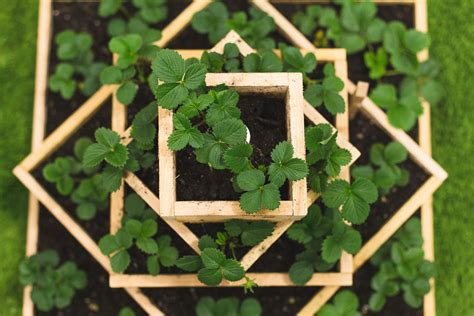 how to make planters how to build a strawberry planter dunn diy gardening