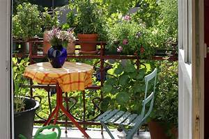 Plantes Et Fleurs Pour Balcon : comment transformer son balcon en petit jardin ~ Premium-room.com Idées de Décoration